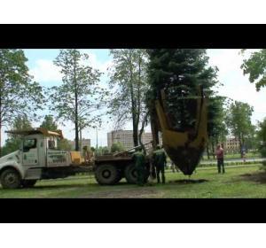 Embedded thumbnail for Механизм для перевозки деревьев на корню